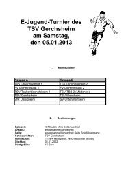 Spielplan der E-Juniorinnen für Hallenturnier am - TSV ...