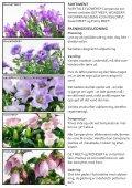 MEE® GARDEN - Gartneriet PKM - Page 4