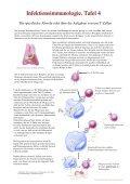 Schautafeln Infektionsimmunologie 010901 - Day of Immunology 2006 - Seite 4