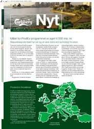 Målet for ProdEx-programmet er øget til 500 mio. kr. - Carlsberg Group