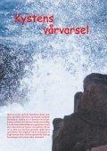 Fuglevennen 1-2005 - Page 2