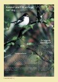 Fuglevennen 1-2005 - Page 6