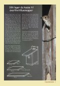 Fuglevennen 1-2005 - Page 7