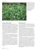 Pengevirke 4/2010 - Merkur Andelskasse - Page 6
