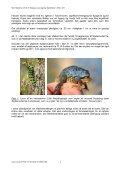 Biologisk overvågning i Siem/Hellum - NCC - Page 4