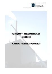 Grønt regnskab 2008 Knudmoseværket - DONG Energy