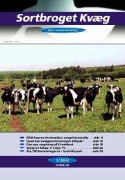 1/2002 - Dansk Holstein