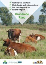 Brandrode Rund - Wageningen UR E-depot