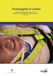 Forebyggelse af ulykker - Statens Institut for Folkesundhed