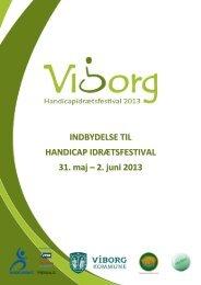 Download i PDF - Handicapidrætsfestival 2013