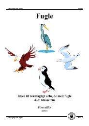 Ideer til tværfagligt arbejde med fugle 4.-9. klassetrin - Inerisaavik