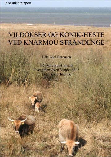 Status rapport - kontakt@ugsorensen.dk