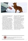 DEN FØRSTE TID MED HUNDEN - Dyrenes Beskyttelse - Page 7