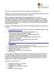Metoder til dokumentation og vurdering af realkompetencer