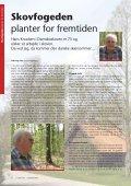 Sommer 2008 - Faldsled - Millinge - Svanninge - Page 6