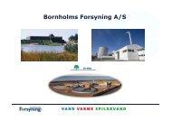 Erfaringer fra Bornholms Forsyning - Sesam Danmark | SESAM World
