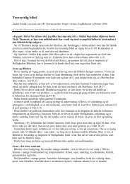 Kerneværdi 2 - Troværdig bibel