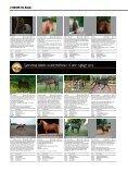 ΚøB ELLER SæLG DIN HEST HER - Heste-Nettet - Page 3