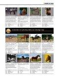 ΚøB ELLER SæLG DIN HEST HER - Heste-Nettet - Page 4