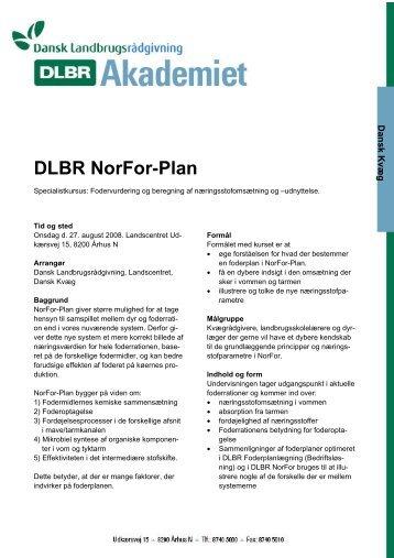 DLBR NorFor-Plan - DLBR Intern