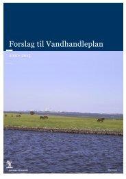 Forslag til vandhandleplan for Odense kommune