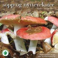 Nr 3 - 2011 i sin helhet - Norges sopp- og nyttevekstforbund