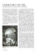 Et forgiftningstilfælde med Satans Rørhat - Page 3