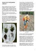 Gødning og kemi. Lav en super stærk skovvej - Skovdyrkerforeningen - Page 4