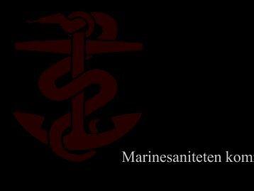 Sommerfelt-Pettersen, J. Kom epidemiene sjøveien - Helse Bergen