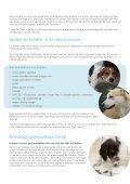Når hunden er aggressiv - Zylkene - Page 3