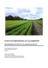 KVÆLSTOFGØDSKNING AF GULERØDDER - GartneriRådgivningen