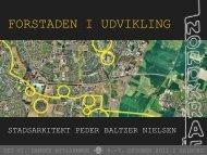 Stadsarkitekt Peder Baltzer Nielsen, Aalborg Kommune