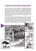 Oversigtskort – Lilleåen - Page 6