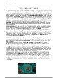 casper daugaard desfeux ryslinge allé 34 2770 kastrup 1.w ... - Liv.dk - Page 4