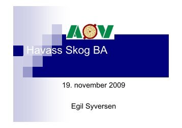 AØV-Egil Syversen - Havass Skog BA