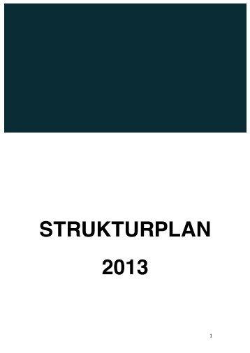 STRUKTURPLAN 2013 - Somali Diaspora Organisation