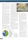 Pattegrisediarré – et problem i stigning? - Forlaget Børs-Mark A/S - Page 2