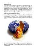 Download-fil: DEN NYE NATION - Erik Ansvang - Visdomsnettet - Page 6
