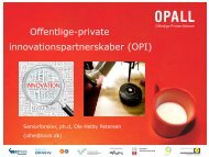 Offentlige-private innovationspartnerskaber (OPI) - OPALL