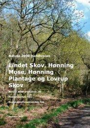 Natura 2000-handleplan: Lindet Skov - Haderslev Kommune