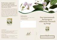 Den Internationale Bachterapeut- uddannelse Danmark og Norge