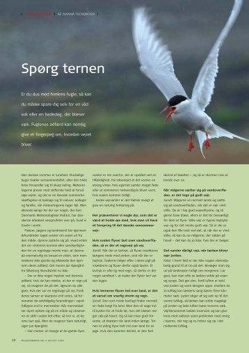 Læs side 20-21 i MiljøDanmark nr. 4, 2005