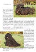 Den ungarske hyrdehunderace puli er kendetegnet ved sin meget ... - Page 2