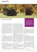 Den ungarske hyrdehunderace puli er kendetegnet ved sin meget ... - Page 3