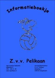 2011-01-16 Pelikaan informatieboekje digitale