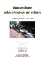 Liv og samfund, april 2006. Seminarieprojekt - Gaderummet
