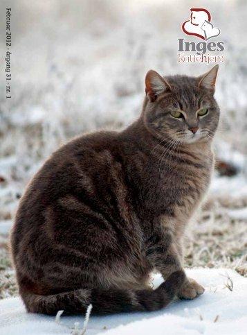 Februar 2012 - årg ang 31 - nr. 1 - Inges Kattehjem