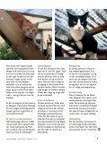 Februar 2012 - årg ang 31 - nr. 1 - Inges Kattehjem - Page 5