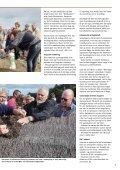 Tækkemanden 3/2012 - Dansk Tækkemandslaug - Page 5