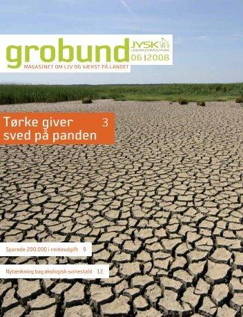 Tørke giver 3 sved på panden - Jysk Landbrugsrådgivning
